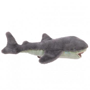Grand Requin, Tout Autour...