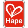 Hape Toys
